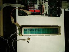 Measure Temperature with the Dallas Maxim DS1820 sensor?