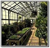 Terrarium Humidity