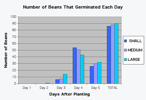 The Effect of Seed Size on Germination Rate