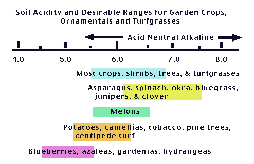 Soil Acidity and Liming