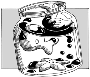 How do oil spills affect marine life?
