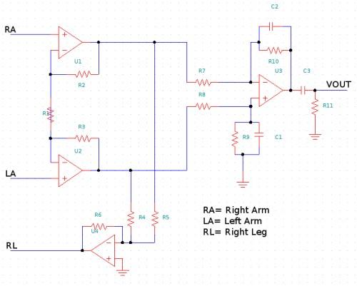 Understanding bioelectricity