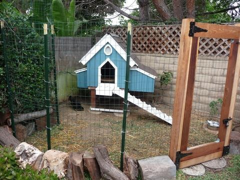 Automate Your Chicken Coop With Arduino