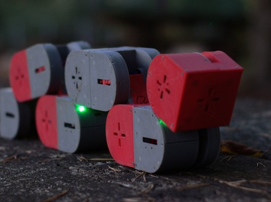 Dtto is a 3D-printed, self-configurable modular robot