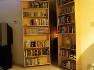 Bookcase automatically opens to reveal secret lair
