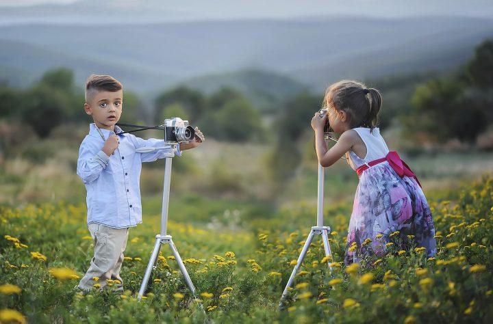 Clear Shot: Three Good Digital Cameras for 2019-2020